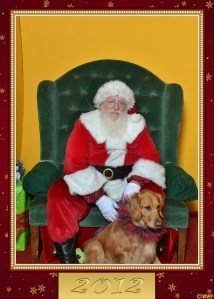 Santa 2012 1 thek9harperlee