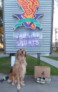 Varsity Sports thek9harperlee