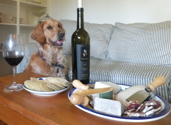 Wine and Cheese thek9harperlee