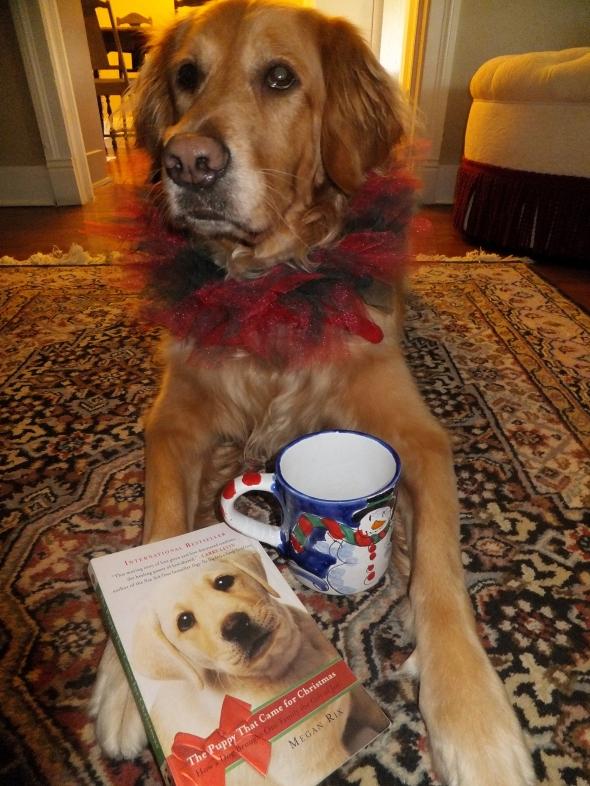 Christmas Puppy 2 thek9harperlee