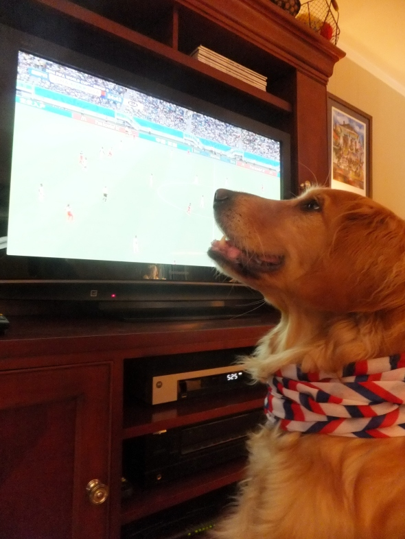 World Cup 1 thek9harperlee