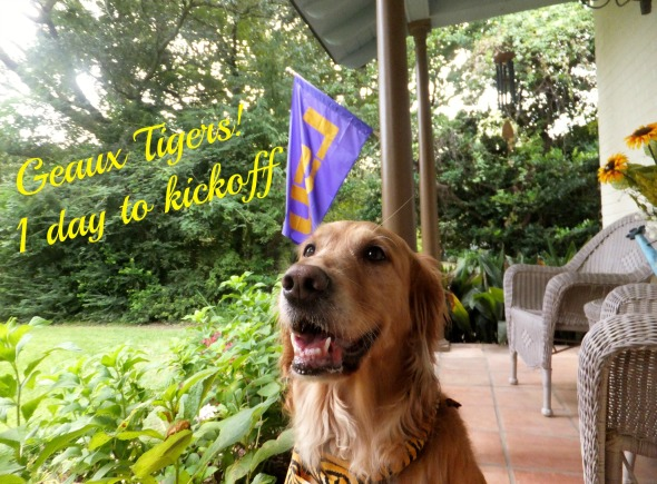 Countdown Flag edit thek9harperlee