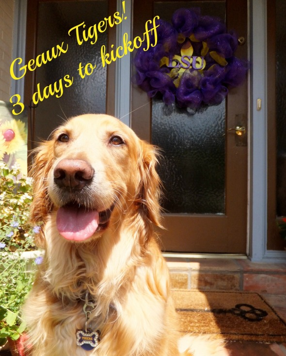 WW Countdown Door Decor  edit the k9harperlee