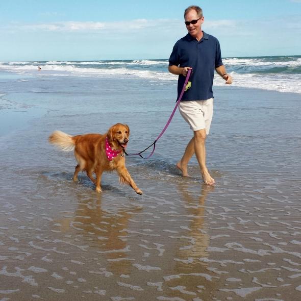 HL Beach 2 thek9harperlee