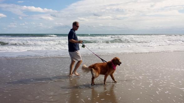 HL Beach 3 thek9harperlee