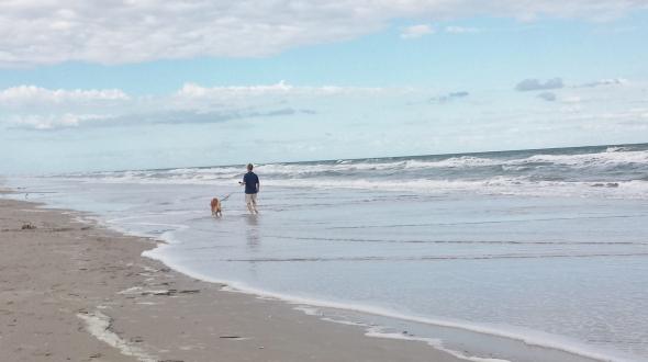 HL Beach 8 thek9harperlee