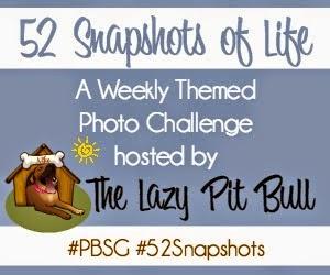 52 Snapshots of Life-sidebar