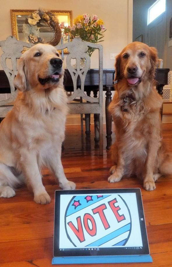 vote-1-thek9harperlee