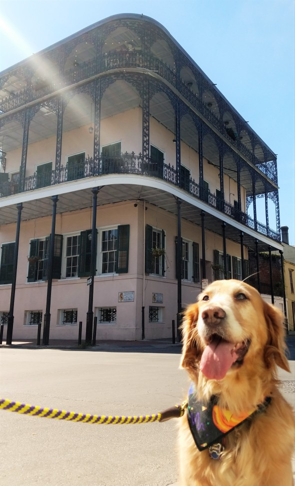 haunted-nola-sultans-palace-1-thek9harperlee