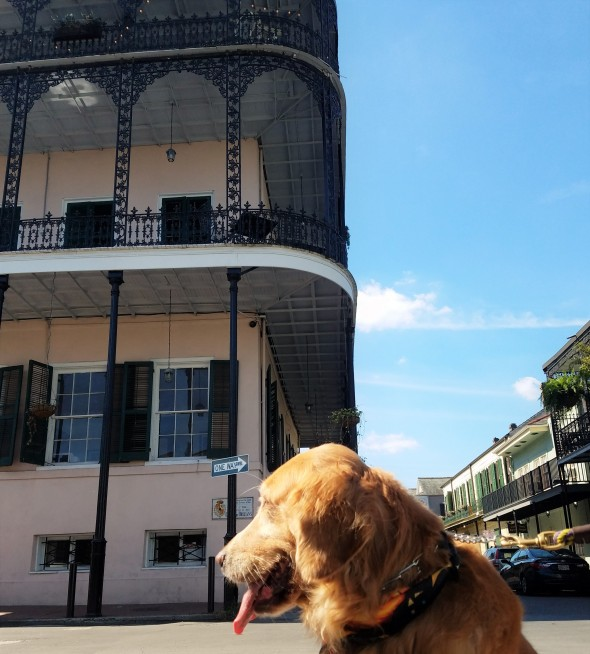 haunted-nola-sultans-palace-2-thek9harperlee