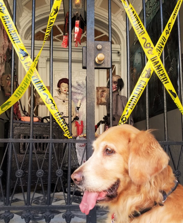 lafittes-lalaurie-4-thek9harperlee