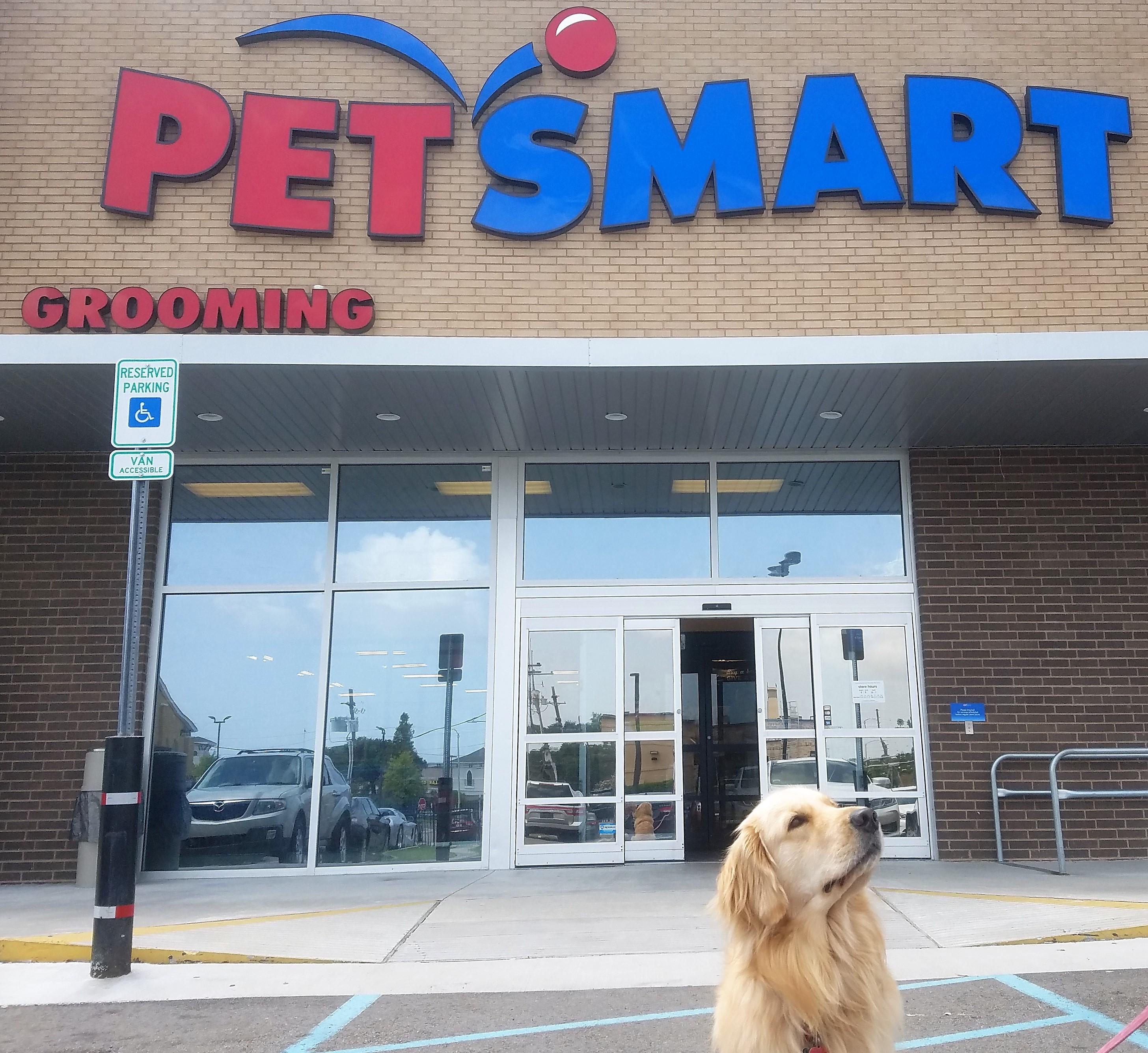 doors unique smart glass for awesome sliding of door dog petsmart pet